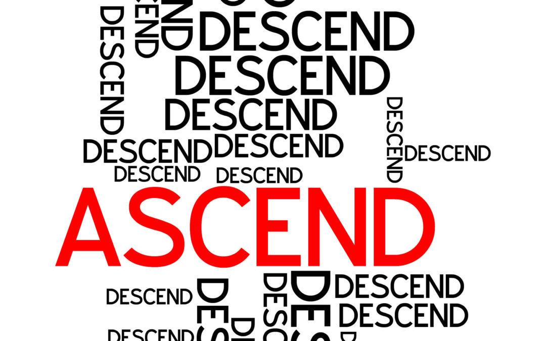 Ascender/Descender Workout